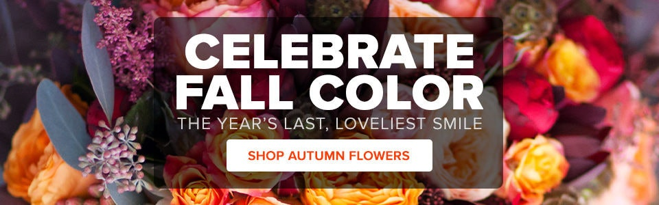 Fall Flower & Gift Delivery