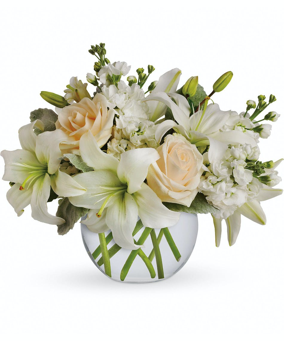 Of white flower delivery salisbury ma kittys flowers isle of white flower delivery salisbury ma kittys flowers mightylinksfo Image collections