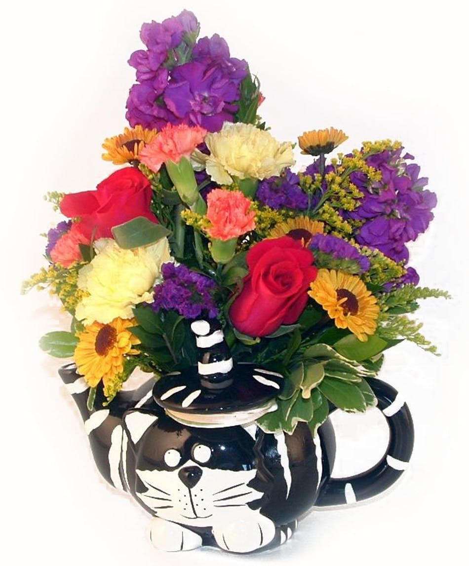 Chester The Cat Teapot Salisbury Md Florist Flower Delivery