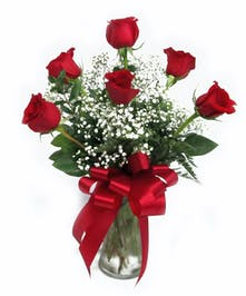 Six Red Roses Arranged