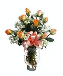 One Dozen Long Stemmed Peach Roses