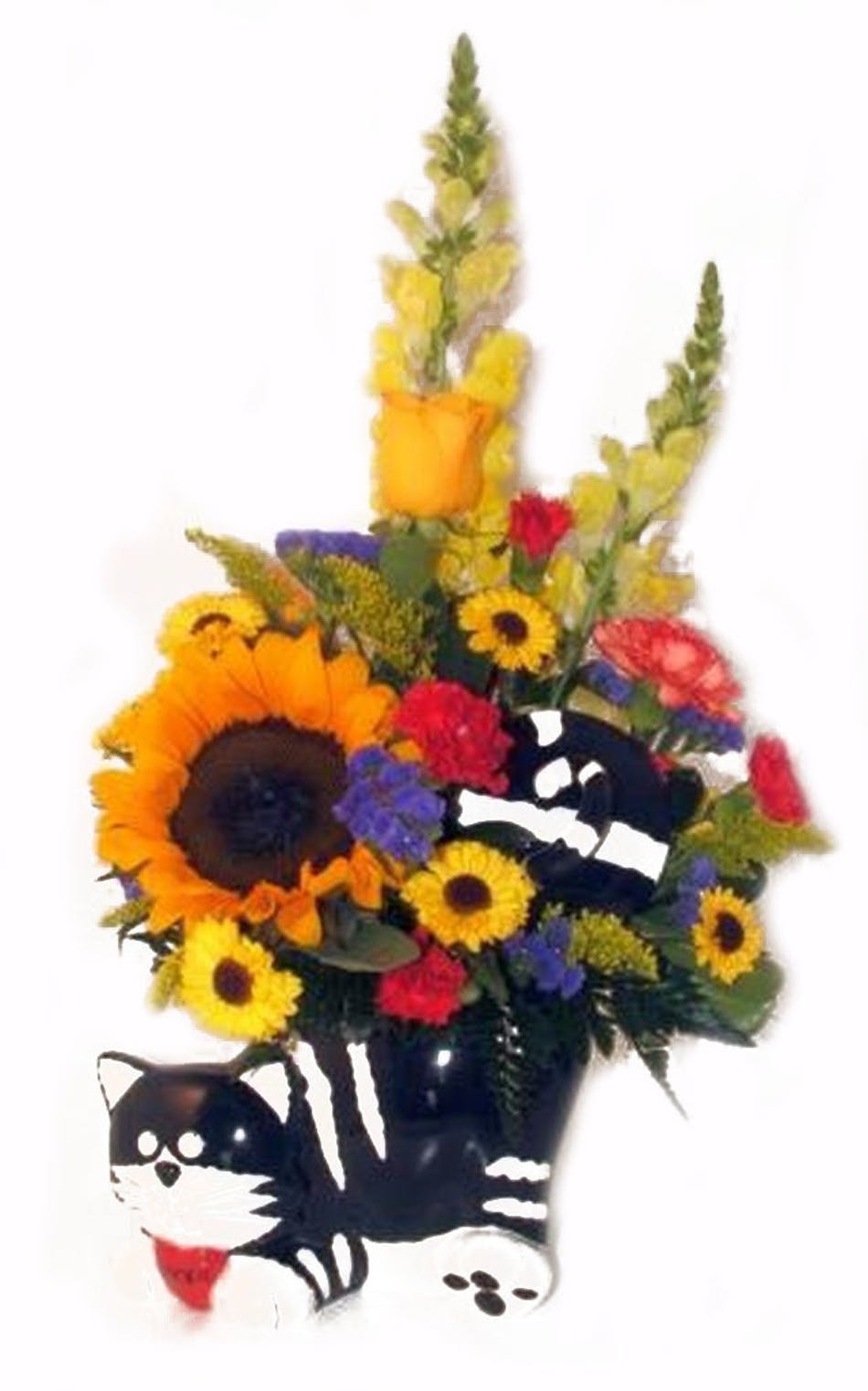 Chester The Cat Cookie Jar Salisbury Md Florist Flower Delivery