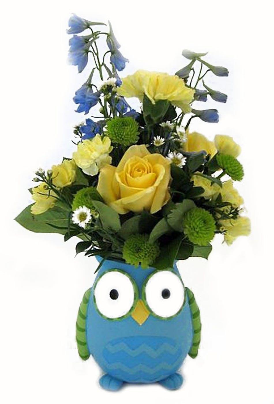 Baby Boy Owl Baby Boy Owl Salisbury Md Florist Flower Delivery