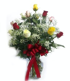 One Dozen Long Stemmed Assorted roses